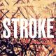 Stroke - VideoHive Item for Sale