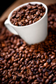 Fresh white cup of hot brazilian coffee beans - PhotoDune Item for Sale