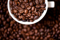 Detail of coffee mug with fresh, bio coffee beans - PhotoDune Item for Sale