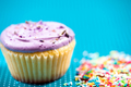 close-up of a colourful muffin with vanilla and fruits topping - PhotoDune Item for Sale