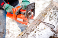 Adult worker cutting trees with chainsaw and tools - PhotoDune Item for Sale