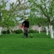 Man Trimming Grass In The Garden Using Mower - VideoHive Item for Sale