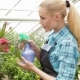 Female Florist Sprays Water on Plants at the Garden Centre - VideoHive Item for Sale