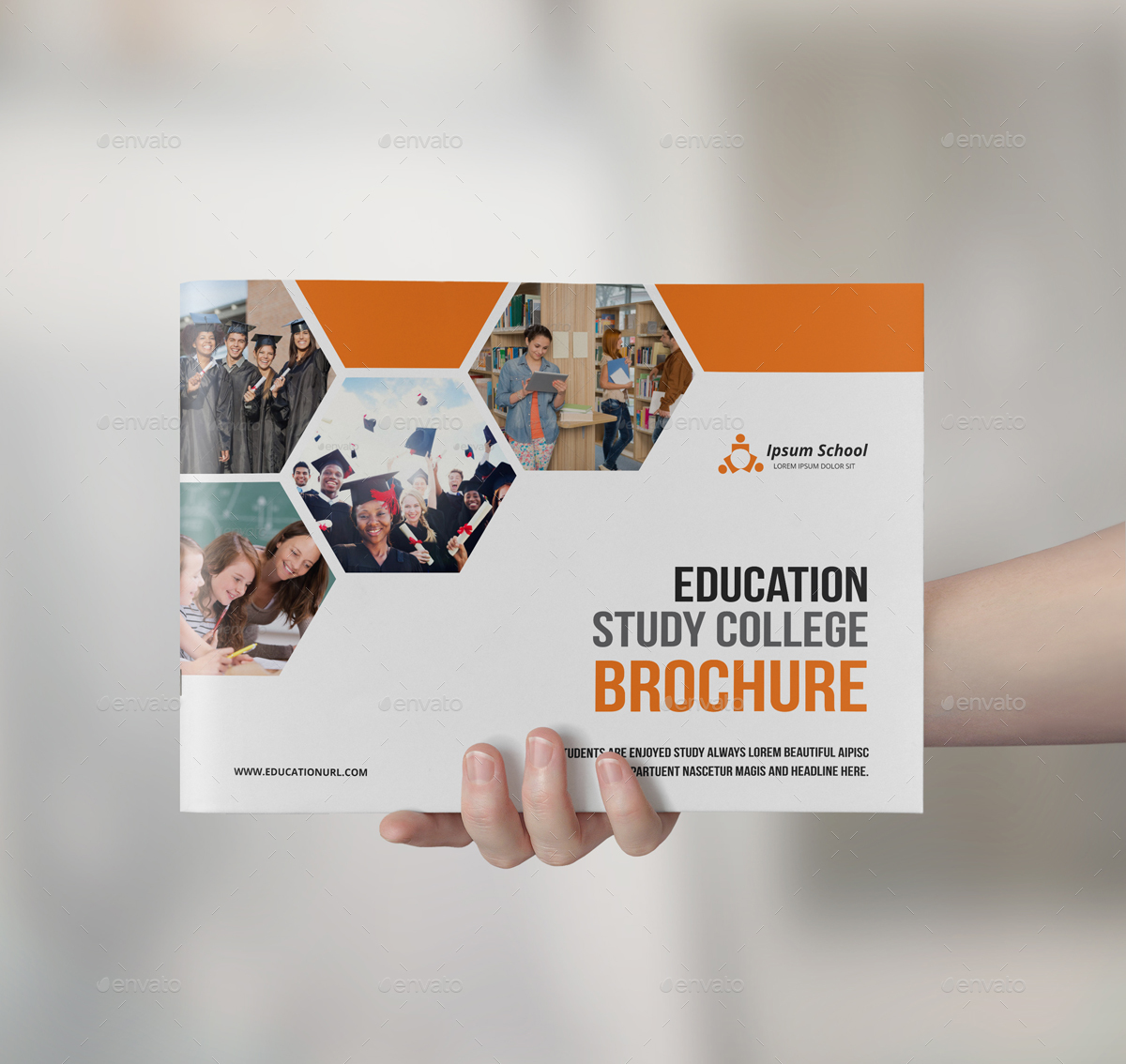 15+ FREE Educational Brochure Templates - Word (DOC) | PSD ... |Brochure Design Education