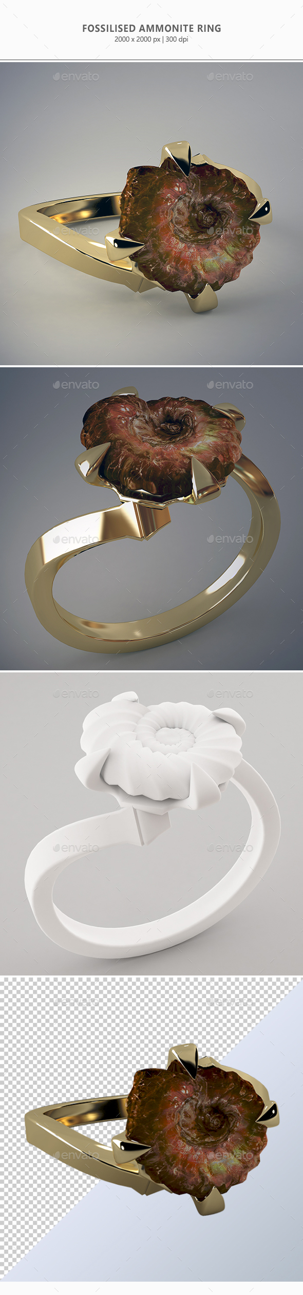 Fossilised Ammonite Ring - Objects 3D Renders