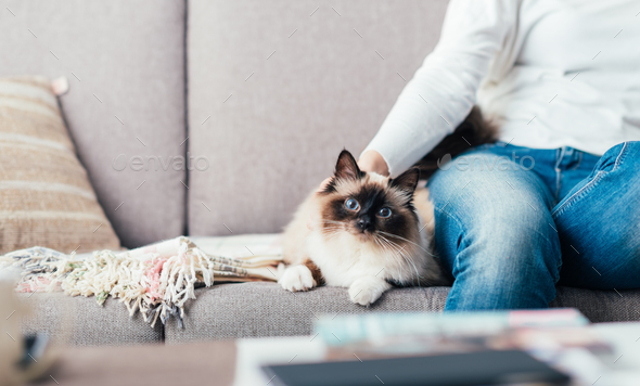 Woman cuddling her cat - Stock Photo - Images