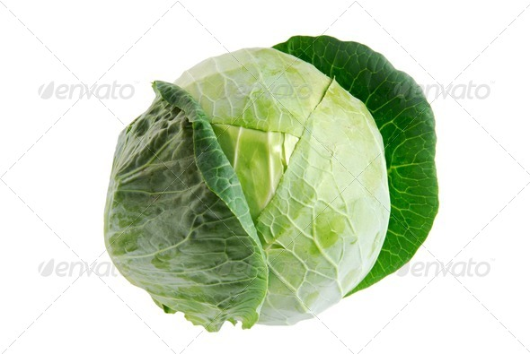 One isolated Cabbage green - Stock Photo - Images