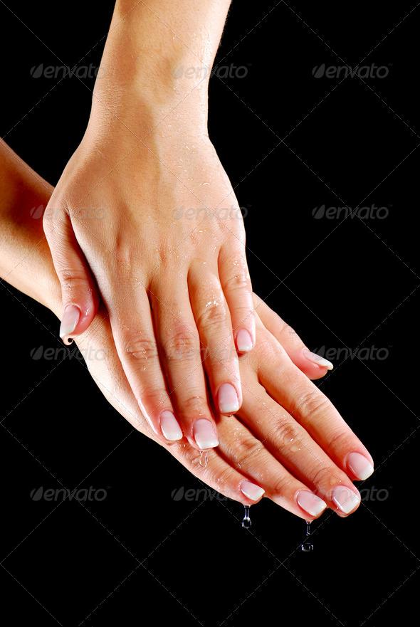 elegance female hands - Stock Photo - Images