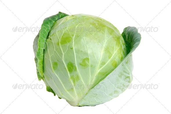 Cabbage green - Stock Photo - Images