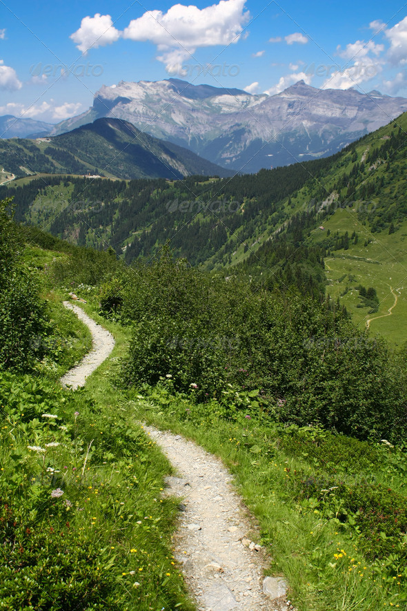 mountain path  - Stock Photo - Images