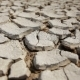 Dry Cracked Land. - VideoHive Item for Sale