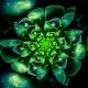 Fractal Flower - GraphicRiver Item for Sale