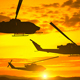Silhouette Of Three Helicopters Over Sunset - VideoHive Item for Sale