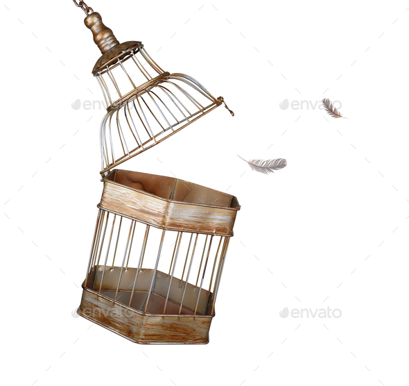 cage - Stock Photo - Images