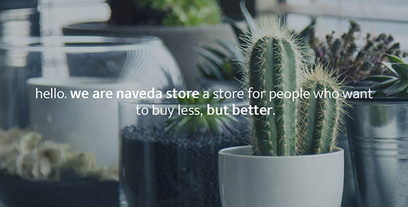 Naveda – MultiConcept WooCommerce WordPress Theme