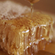 Dripping Honey Dipper - VideoHive Item for Sale