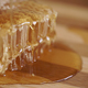 Dripping Honey - VideoHive Item for Sale