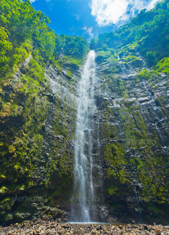 Beautiful Lush Waterfall in Hawaii - Stock Photo - Images