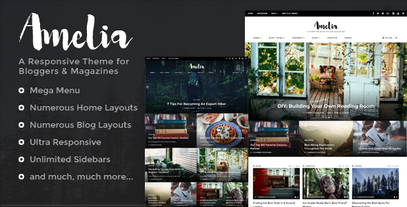 Amelia – A Responsive WordPress Theme for Bloggers & Magazines