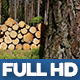 Wood Industry 2 - VideoHive Item for Sale