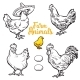 Set of Different Chickens - GraphicRiver Item for Sale