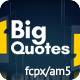 Big Quotes - VideoHive Item for Sale