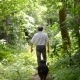 Man With a Dog Walking On a Path In The Woods - VideoHive Item for Sale