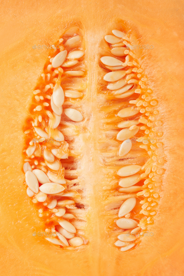 Cantaloupe melon seeds macro texture background
