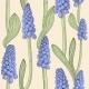 Seamless Pattern With Grape Hyacinth,