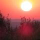 Sunrise Symphony