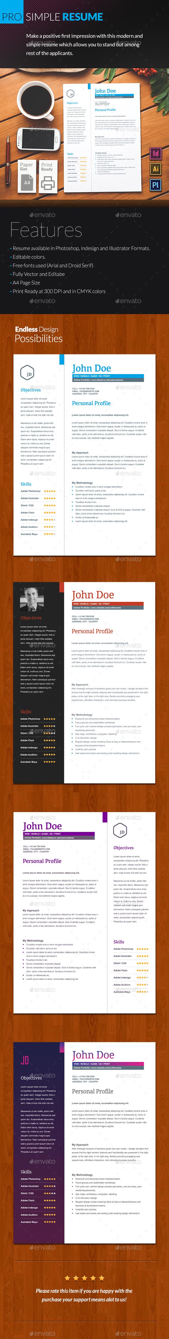 Pro Simple Resume 2 Piece