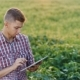 Young Farmer Working In The Field To The Plate. View From Above - VideoHive Item for Sale