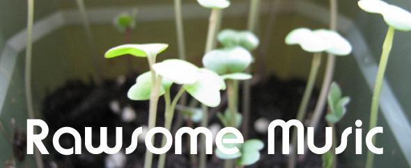 Audiojungle rawsomemusic banner kale w text