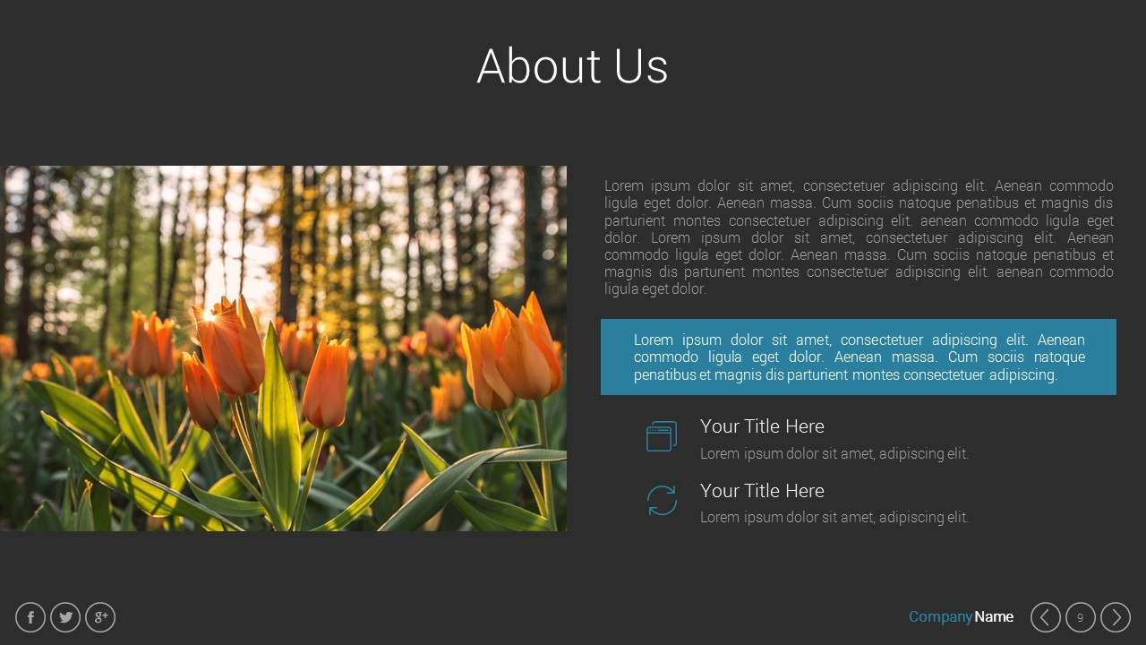 Marketing Pitch Deck Google Slides Presentation Template By Spriteit - Best of ppt flowers scheme