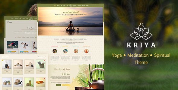 15+ Yoga WordPress Themes 2019 5