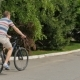 Man Rides a Bicycle Down The Street. - VideoHive Item for Sale