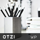 Otzi : Responsive WordPress Theme for Bloggers - ThemeForest Item for Sale