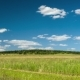 Clouds Moving Over The Fields - VideoHive Item for Sale