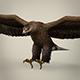 Game Ready Realistic Eagle
