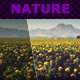 Nature Actions VIII-Graphicriver中文最全的素材分享平台