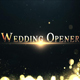 Gold Wedding - VideoHive Item for Sale