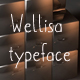 Wellisa font - GraphicRiver Item for Sale