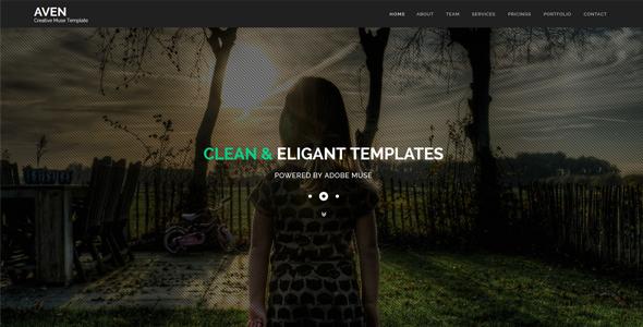Aven – Multipurpose Parallax HTML Template