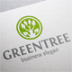 Green Tree - GraphicRiver Item for Sale