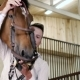 The Man Put On The Horse The Bridle - VideoHive Item for Sale
