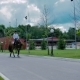 The Man Ride On The Horse On The Road - VideoHive Item for Sale