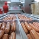 Conveyor For The Production And Packing Of Sausages - VideoHive Item for Sale