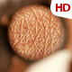 Human Skin 0402 - VideoHive Item for Sale