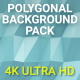 Polygonal Background Pack 4K - VideoHive Item for Sale