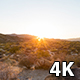 Joshua Tree National Park, California Sunset - VideoHive Item for Sale